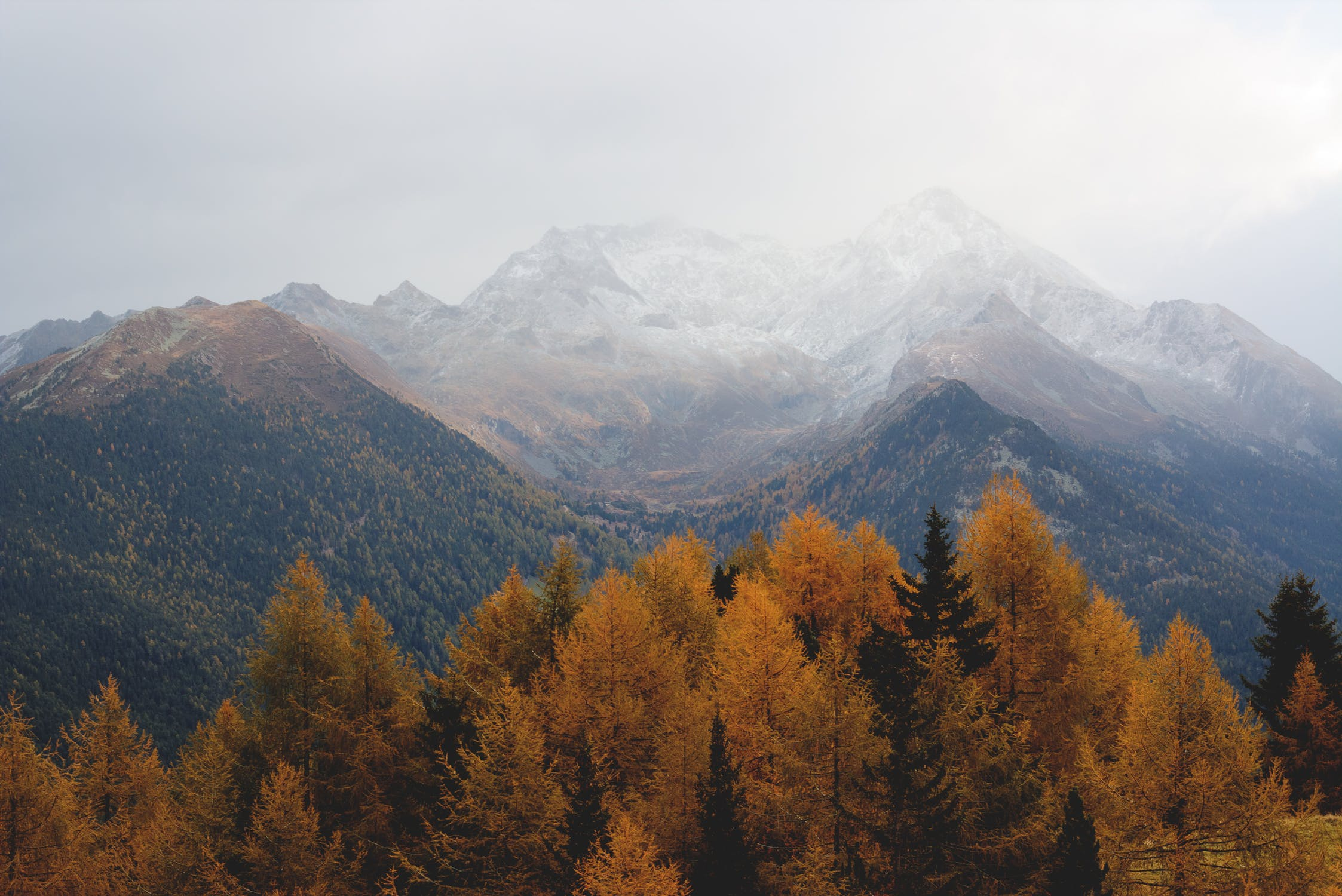 5 eco-friendly fall tips