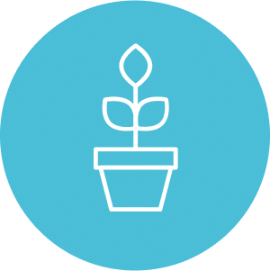 thrive_icon_plant
